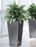 All Of Our Silk Plants Can Be Potted In Our Decorative Plant Containers And  Include Various Designs And Plant Types To Make Decorating Simply Effective.