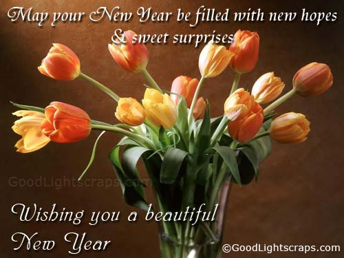 happy new year wishes quotes. HAPPY NEWYEAR 2011 WISHES