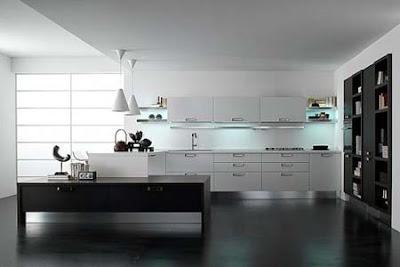 Black and White Luxury Kitchen Design