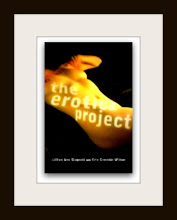 The Erotica Project (w/erin cressida wilson)