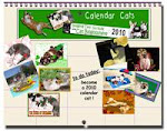 Click here to go see the Calendar Cats