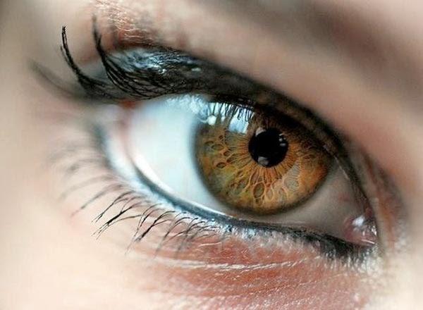 Восстановление зрения по бейтсу отзывы
