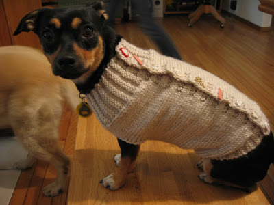 Dog Sweaters Free Knit Patterns Free Patterns