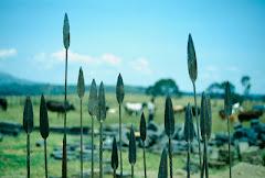 Masai spearheads