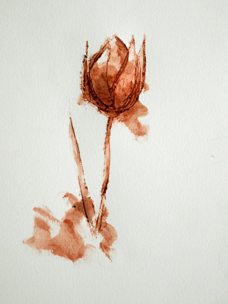tulips by sylvia plath Perhaps only sylvia plath, with her tortured poet's mind, could so eloquently describe the complicated sadness of her world using the fleeting beauty of the tulip.