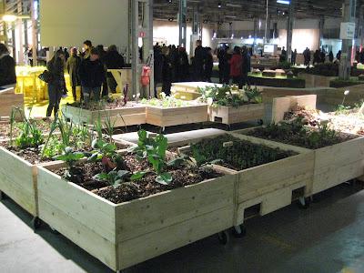 Giardino in IOPhotos: un bellissimo giardino
