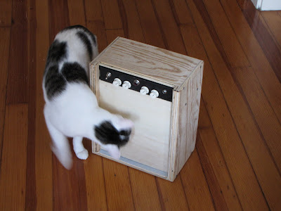 low wattage tube practice amp with curious cat