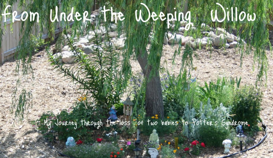 From Under the Weeping Willow