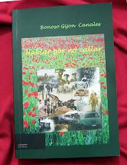 """""""Hablar por no callar"""" libro de poesia de Bonoso Gijon Canales"""