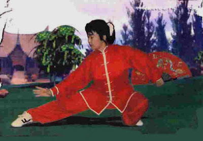 taichi medical forms ,international medical taichi forms,self defense by taichi ,expert forms 2