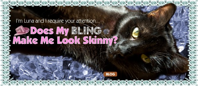 Does my Bling Make me Look Skinny?