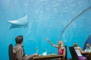 Under Water Restaurant [Ritemail.blogspot.com]