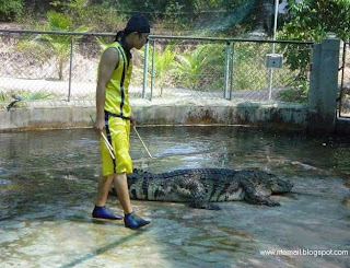 Crocodile Hunter [www.ritemail.blogspot.com]