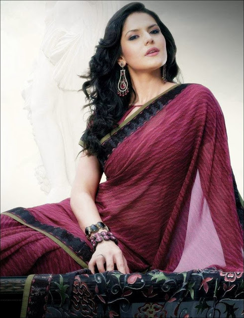 Zarine+Khan+Saree+Photoshoot+ +004 Karikalan Movie Actress Zarine Khan in Saree