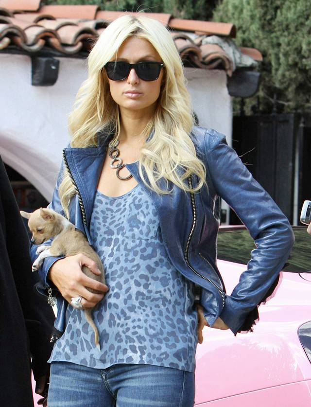 celebrity wallpapers and videos paris hilton in beverly hills. Black Bedroom Furniture Sets. Home Design Ideas