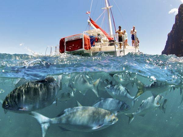 America's 24 Best Adventure Towns Lihue-Kauai-Hawaii
