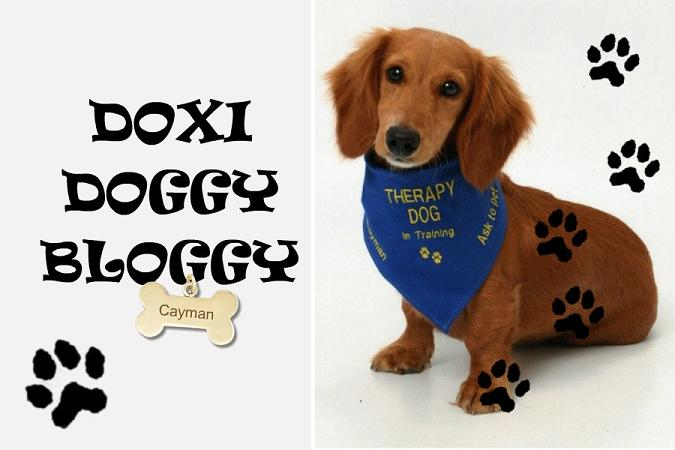 Doxi Doggy Bloggy