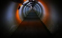 LHC CERN Access