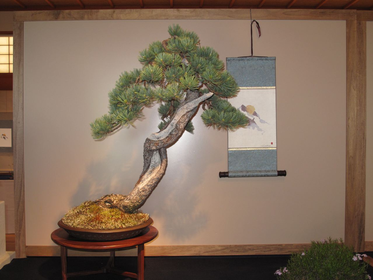 Woodland Bonsai Japanese Flavor The Portland Japanese Garden