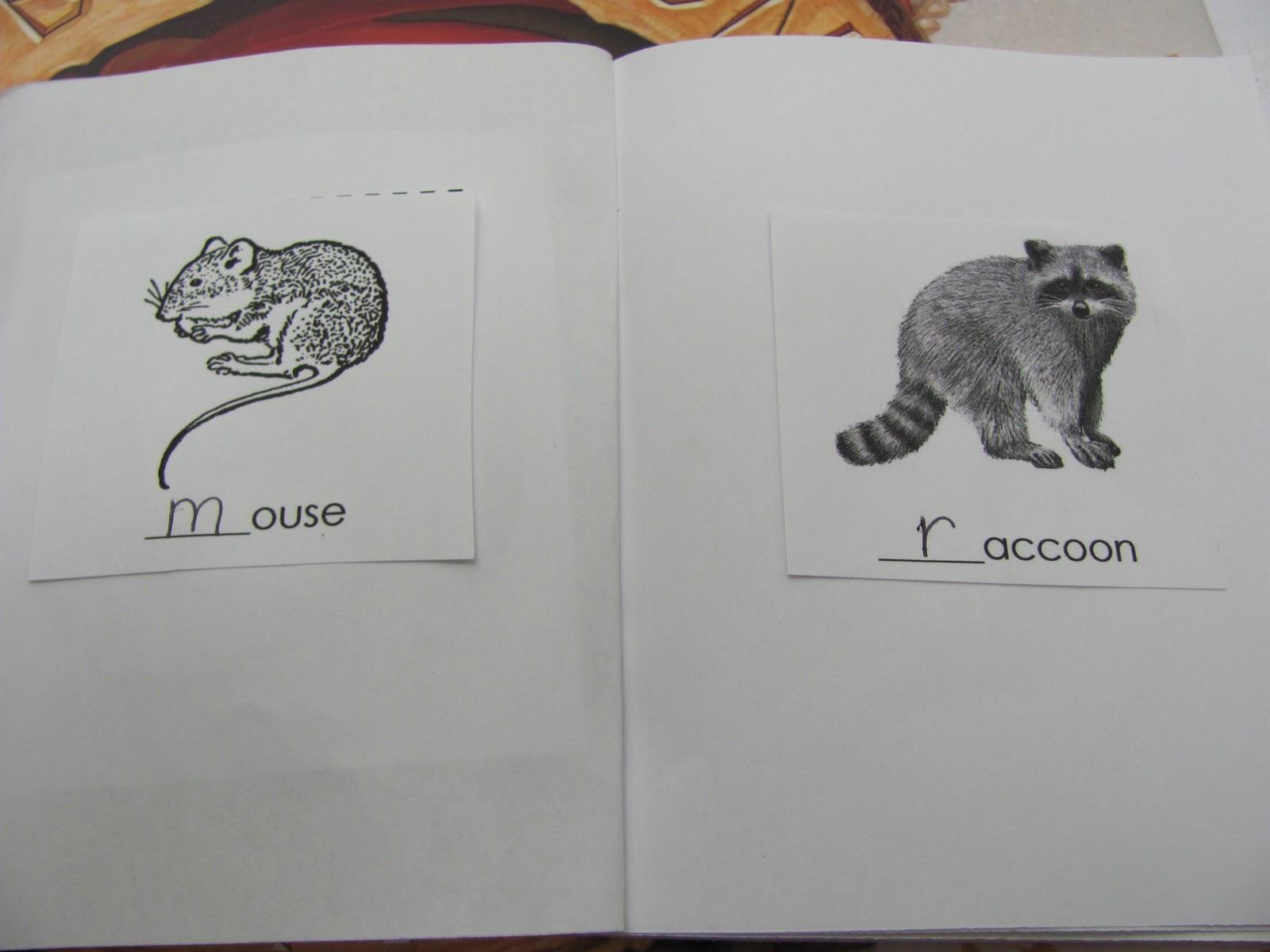 Lil Country Librarian All Aboard the Hibernation Station – Hibernation Worksheets Kindergarten