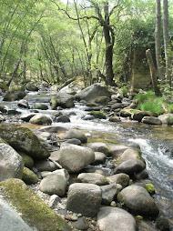 mogarraz-monforte. el camino del agua