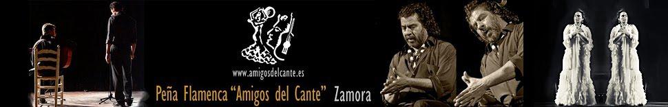Blog Amigos del Cante