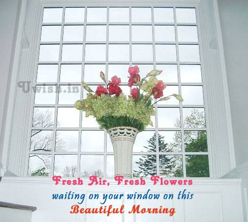 Good Morning wishes and greetings with a beautiful pot on the window.