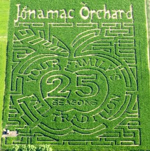 apple-corn-maze