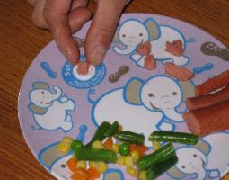 safe sizer choking prevention plate