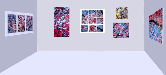 Hanami - Exposition virtuelle