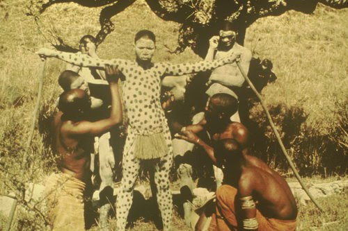 Crocodick images disappeared african traditional dress