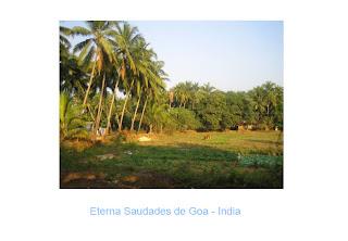 Saudades de Goa