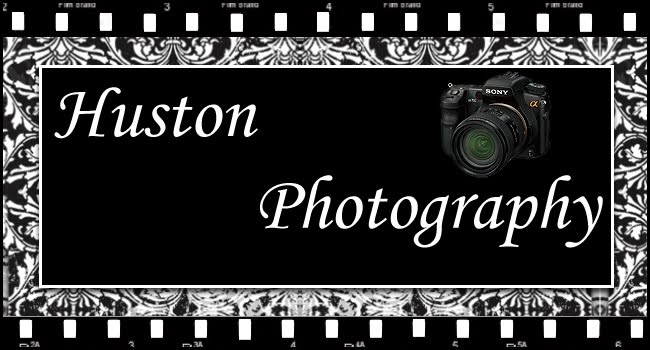 Huston Photography