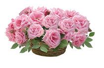 ♥Estas flores son para todas las que me visitan♥