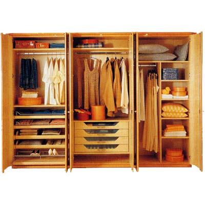 Blue arian november 2009 for Cloth cabinet design