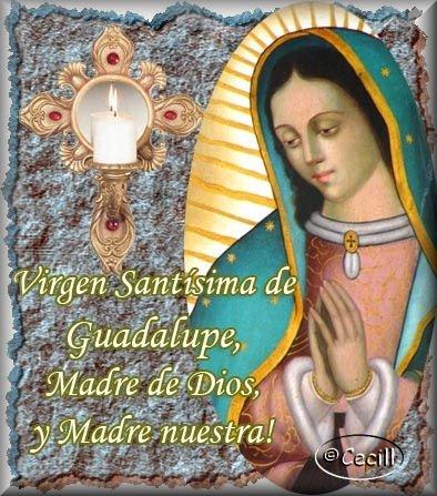 Imágenes de la Virgen de Guadalupe con frases - Imagenes Dela Virjen De Guadalupe Con Frases