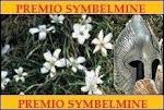 Prêmio Symbelmine