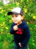 My Mateo