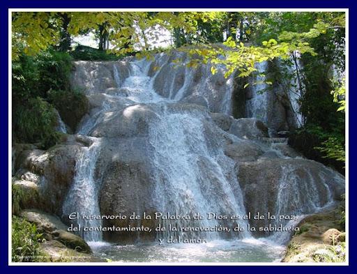 Estoy encantado de la vida ense ame se or dios for Ensename todo