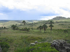 Morro Cabeludo