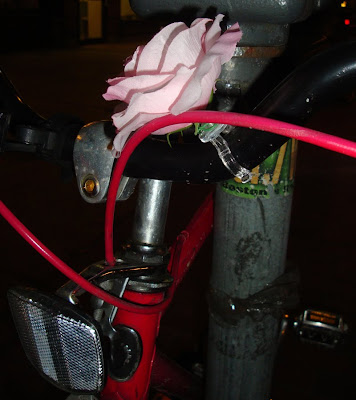 rose on a bike