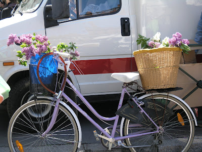 French bicycle lilac carrying lilacs