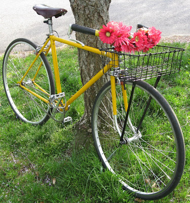 Yellow bike, pink flowers