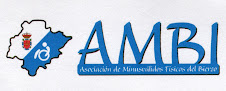 AMBI-Asociación de Minusválidos Físicos del Bierzo