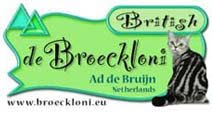 Broeckloni Cattery