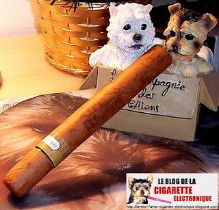 cigare électronique rechargeable Prestige de chez Ecigarette-France