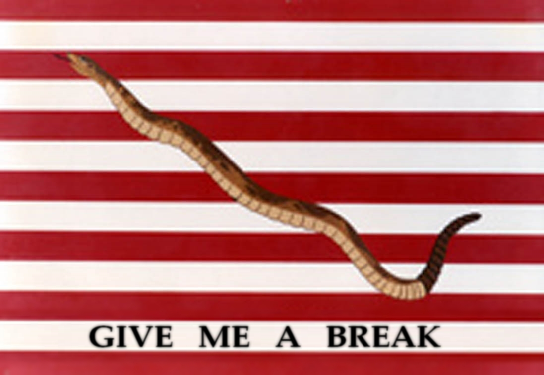 Snake%252Bflag Oh, boo f ing hoo. House speaker to be John Boehner says the president ...