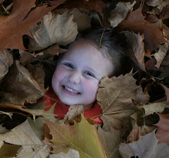McKinley in the Leaves