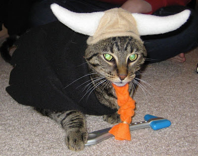 Cat Viking Hat