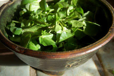 Watercress from Monterey Market